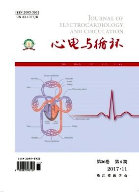 心电与循环
