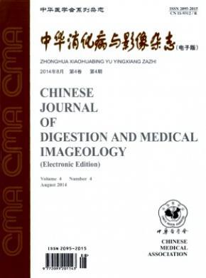 中华消化病与影像(电子版)